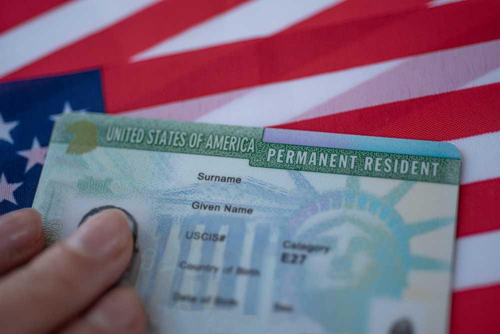 green card-03