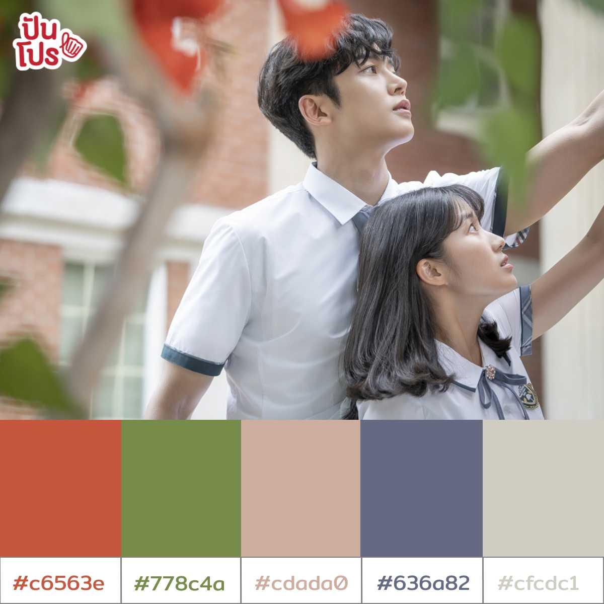 Color Palette20