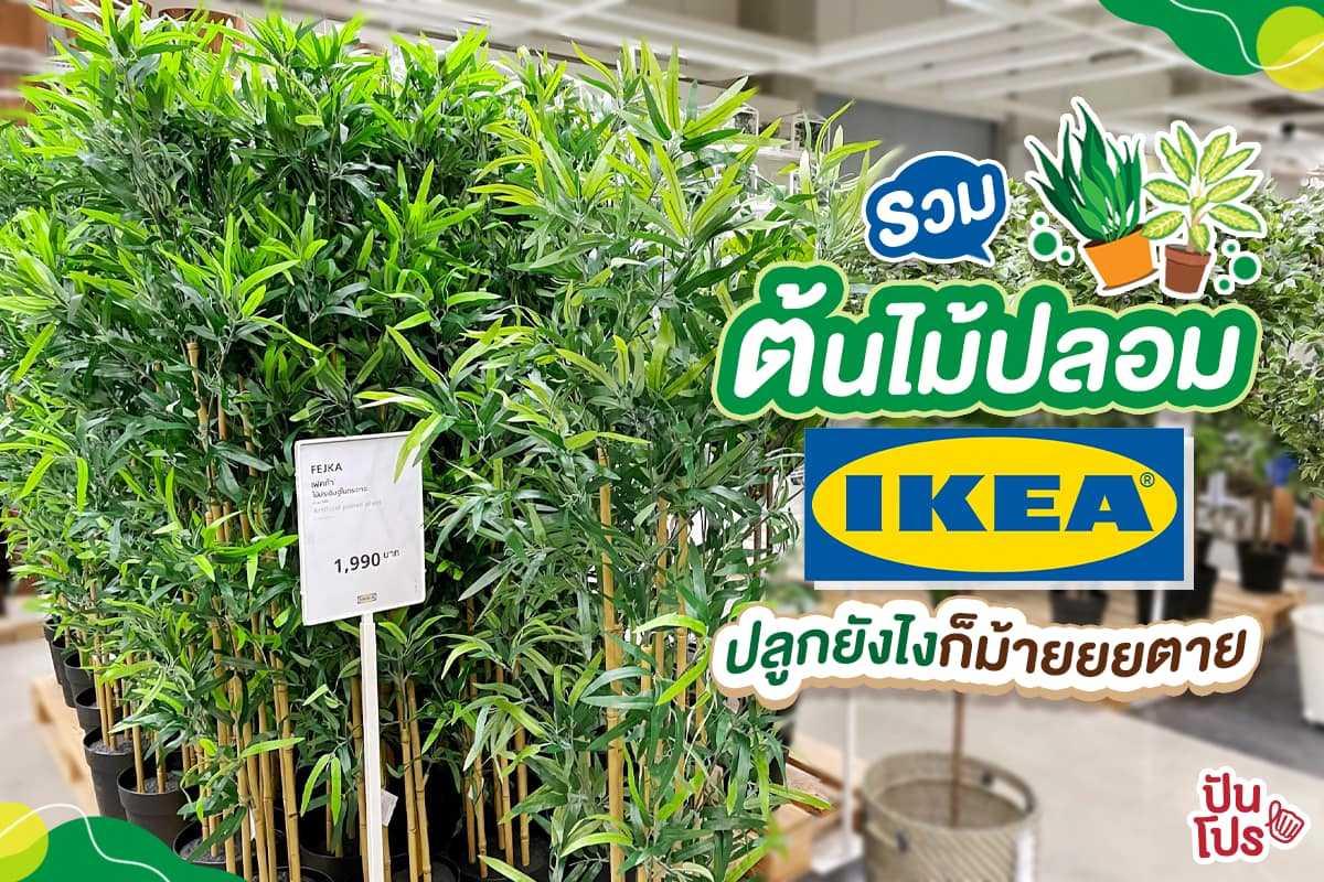 รวมต้นไม้ปลอมน่าซื้อที่ IKEA เอาไว้ประดับบ้านสวยๆ นักตกแต่งบ้านตัวยงไม่ควรพลาด!
